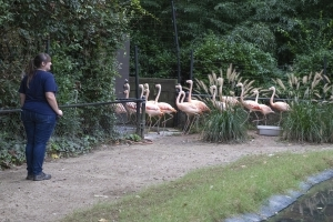 As people evacuate before hurricane, zoo animals move inside