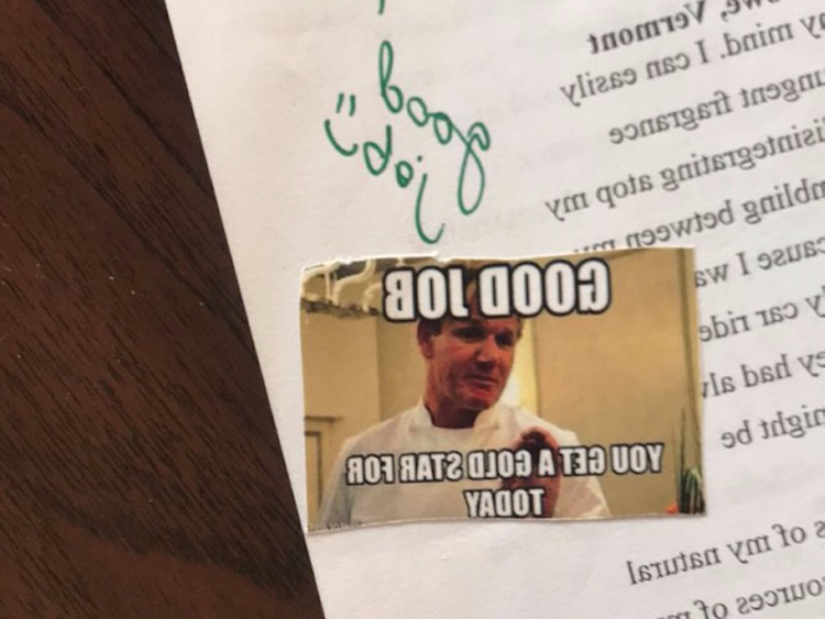 offbeat a teacher uses memes to grade papers and people think