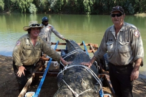 Monster crocodile becomes largest caught in Northern Territory this year