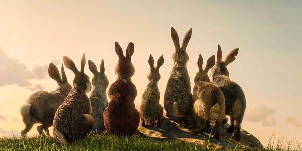watership down 2018 cowslip voice