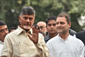 Momentous, says Rahul Gandhi after meeting Chandrababu Naidu on Oppn unity