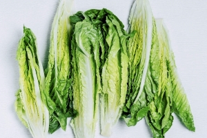 Here Are the Symptoms of E. Coli—and Everything Else You Need to Know About the Romaine Lettuce Outbreak