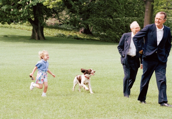 Sully, George H.W. Bush's service dog: What's next for the beloved lab?