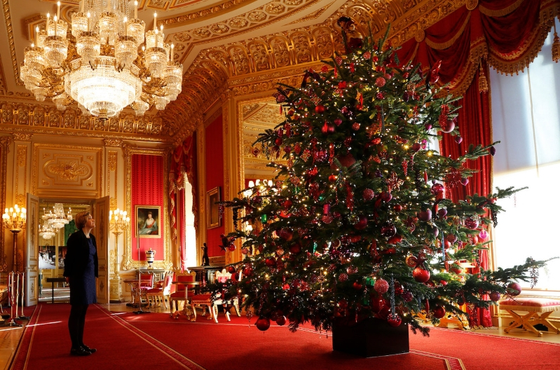 The royal family has put up its Christmas trees and they're as regal as you'd hope