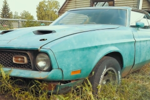 Check Out This Alaskan Treasure Trove of Awesome Vintage Mustangs