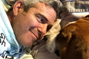 Andy Cohen Is 'Patiently Waiting' for His Baby on the Way with Dog Wacha