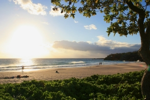 Hawaii Experiences Boost in Tourism Numbers