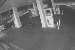 RCMP seek 'armed and dangerous' suspects after shot fired following break-in at central Alberta gas station
