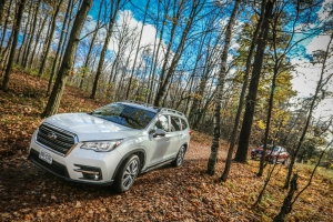News Large Suv 2019 Canadian Car Of The Year Pressfrom Canada