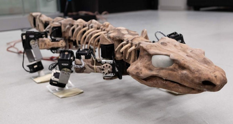 Scientists built a lizard-like robot based on a 280-million-year-old fossil
