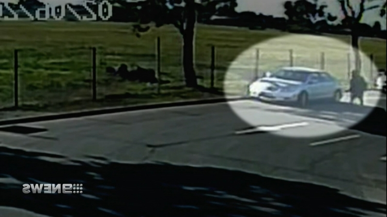 Australia: Thug apologises to grandfather he carjacked and left for