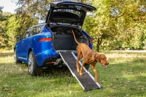 Jaguar Introduces New Range of Pet Products