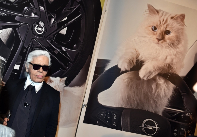Offbeat Meet The Cat That May Inherit Part Of Karl Lagerfelds