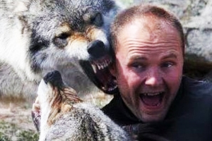 Meet the wolfman who became the 'pack leader' to grey wolves at a nature park where you, too, can get up close and personal with the beasts
