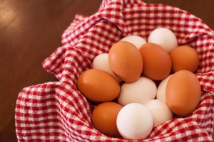 Vic salmonella egg scare linked to NSW