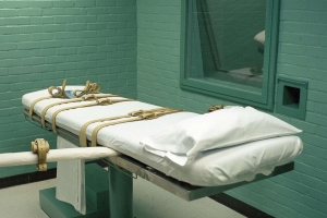 5 counties are responsible for 21 percent of executions across the country