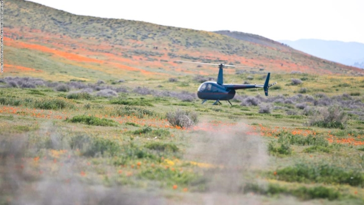 US: Helicopter lands in California park amid super bloom