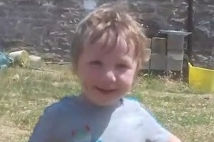 Three-year-old boy was crushed to death by his father's 4x4 in horror accident on Welsh farm