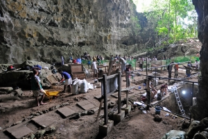 Matter: An Ancient Human Species Is Discovered in a Philippine Cave