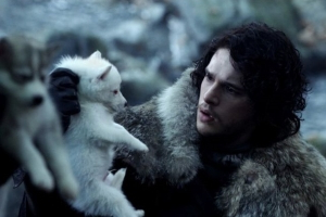 Game of Thrones Fan Argues Direwolves' Names Hint at the Starks' Fates