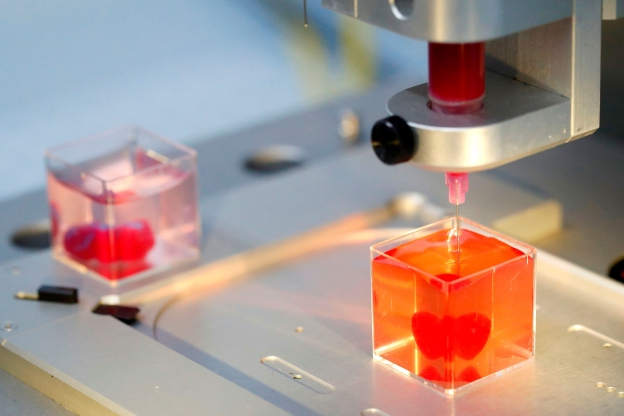 Scientists unveil 'first' 3D print of heart with human tissue, vessels