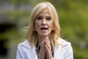 Kellyanne Conway: Democrats 'desperate' to stop Trump-like Bernie Sanders