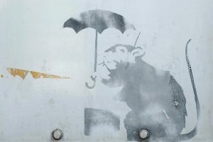 A Banksy rat? Tokyo city displays work 'by famous artist'