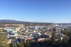 Whitehorse developing local Airbnb regulations