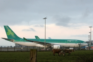32 passengers accidentally used emergency exits to get off plane at Cork Airport, report finds