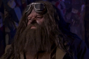 Universal gives first look at Hagrid animatronic on new Harry Potter world roller coaster