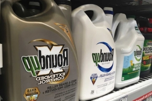 Monsanto ordered to pay $2 billion to couple who say they contracted cancer after using the weedkiller Roundup