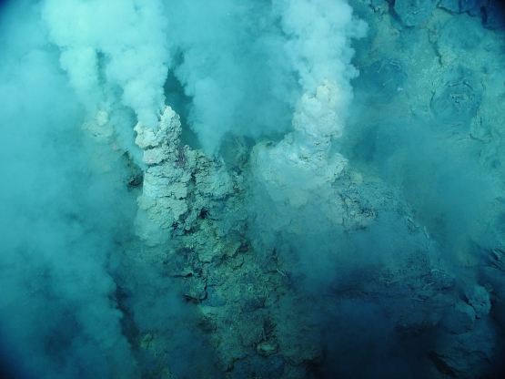 Plastic proliferates at the bottom of world's deepest ocean trench