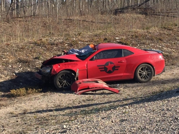 Camaro involved in apparent collision with bison in Wood Buffalo National Park