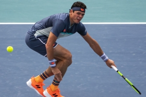 Report: Raonic withdraws from French Open