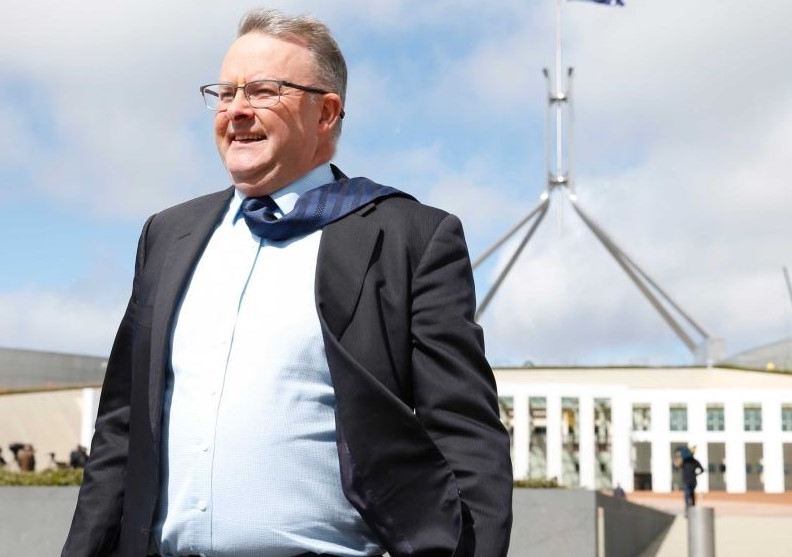 Anthony Albanese to become Labor's new leader unopposed following shock federal election loss