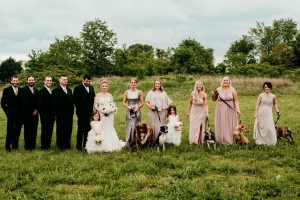 A bride helped shelter dogs find a home by having her bridesmaids walk the pups down the aisle at her wedding