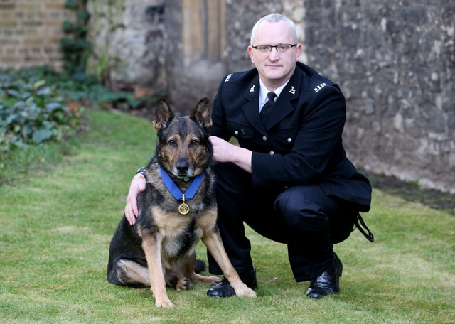 Finn's Law named after hero police dog comes into force