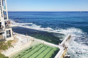 An Insta-nightmare! Water at 'influencer' hotspot Bondi Icebergs turns GREEN after the pool is inundated with seaweed