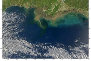 Near-record 'dead zone' predicted in the Gulf of Mexico this summer