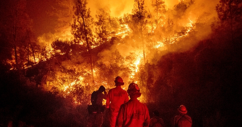 He Tried to Plug a Wasp Nest. He Ended Up Sparking California's Biggest Wildfire.