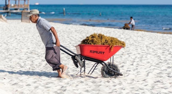 Travel: Sargassum Situation Spurs State of Emergency in