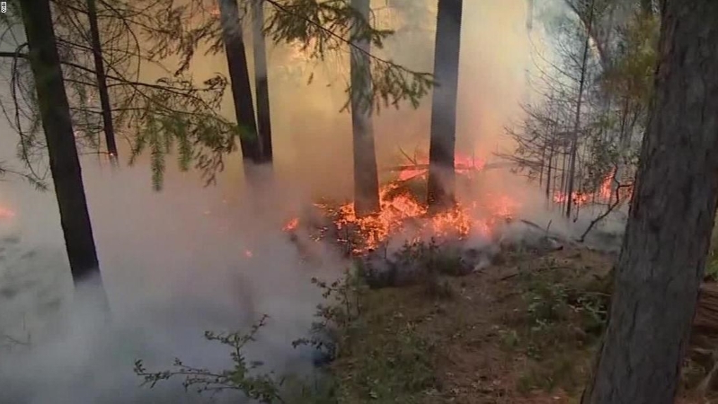 Wildfires in California: Feds warn about upcoming season