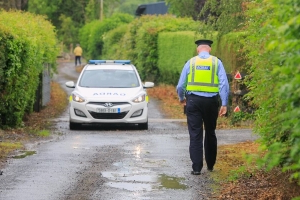 Two men killed in horror plane crash near Moone, Co Kildare named locally