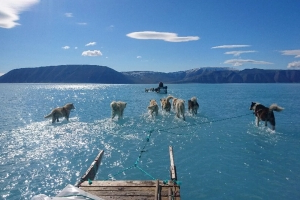 Greenland's sea ice is melting as temperature soars to new heights