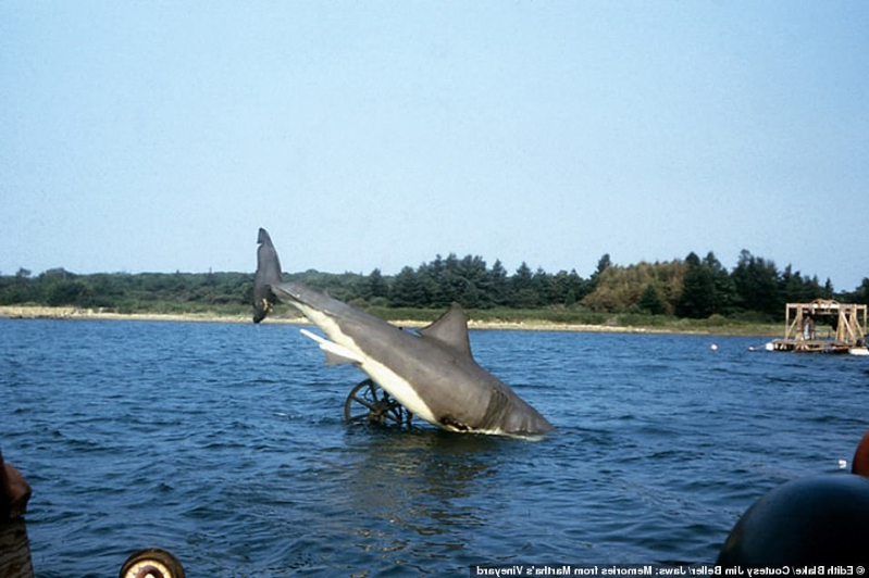 7930b07b78d Entertainment: Inside Jaws: Fascinating photos from the 1974 set of ...