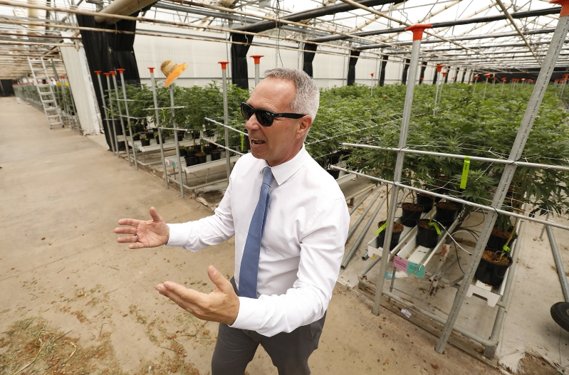 US: The world's largest pot farms, and how Santa Barbara