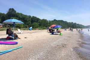 Elevated E. coli levels prompt swim advisories for Port Stanley's Little Beach, Erie Rest Beach