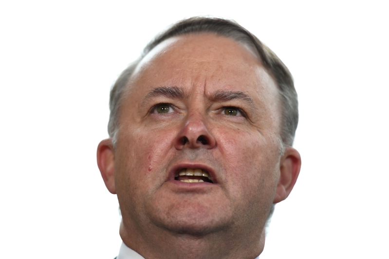 Albanese grilled over Labor's tax cut 'capitulation'