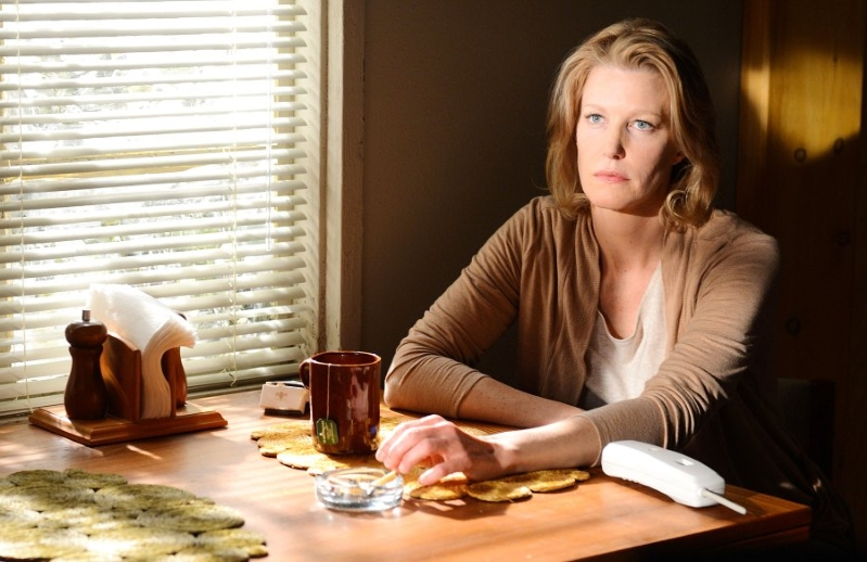 Anna Gunn Details 'Extreme Sexism' During 'Breaking Bad'