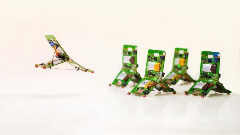These tiny robots tackle tasks in groups, just like insects